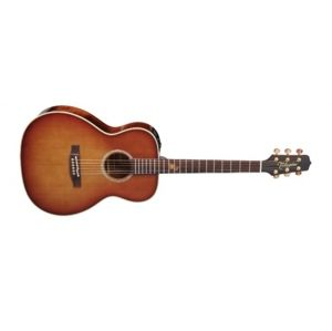 TAKAMINE TF77-PT Natural